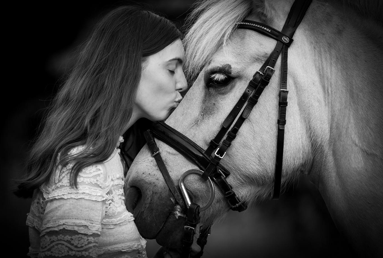 Hestefotografering